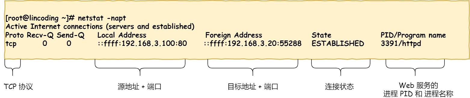 TCP 连接状态查看