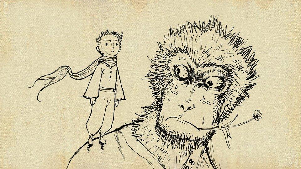 monkey-1179368_960_720.jpg
